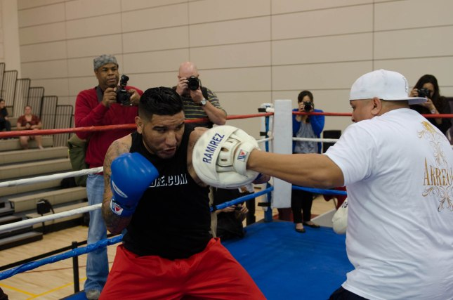Arreola Press Workout  2014 (13 of 13)