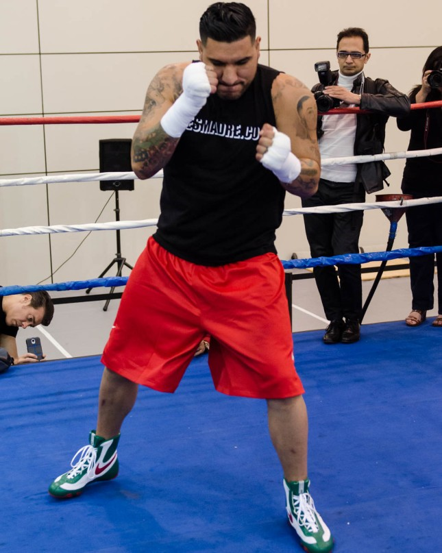 Arreola Press Workout  2014 (3 of 13)
