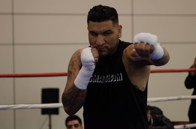 Arreola Press Workout  2014 (5 of 13)