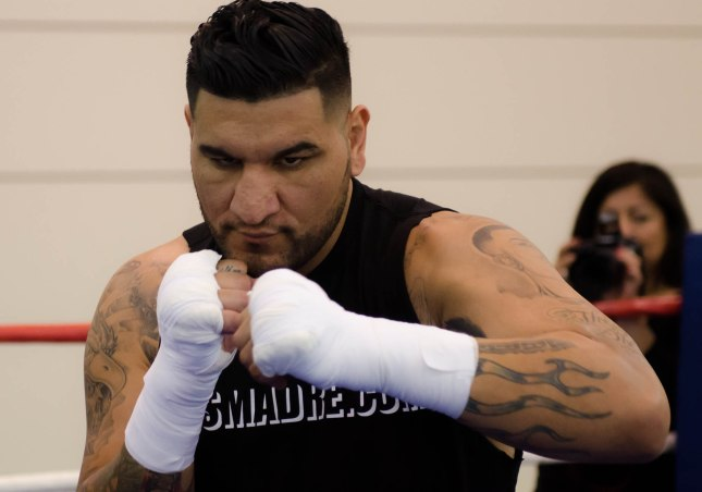 Arreola Press Workout  2014 (6 of 13)