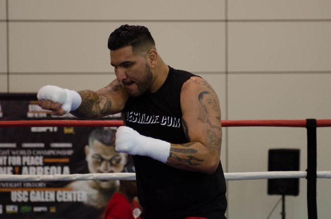 Arreola Press Workout  2014 (8 of 13)